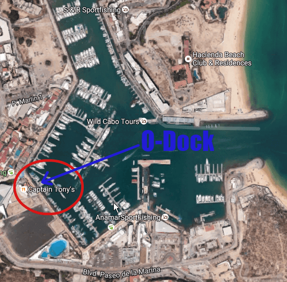 Map Cabo Marina the meeting location for your deep sea fishing charter
