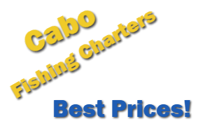 Advertisement Cabo Fishing Charters Best Prices