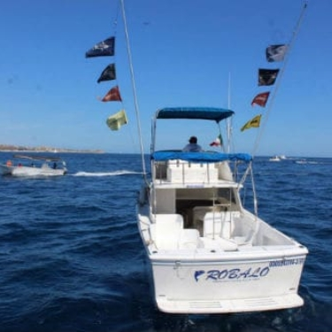 Robalo Flags C11 500-min