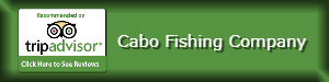 Link to TripAdvisor Cabo Fishing Company LLC